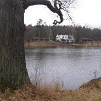 jezioro-dziewicze-6.jpg