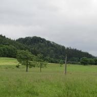 andrzejowka-rybnica-lesna-14