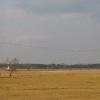 baranow-uzytek-ekologiczny-torfy