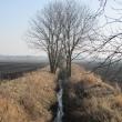bielany-wroclawskie-tyniec-maly-04