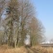 bielany-wroclawskie-tyniec-maly-06