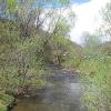 brzegi-gorne-rzeka-prowcza