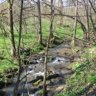 bukowa-dolina-porebnik-2