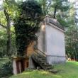 bukowina-sycowska-cmentarz-03
