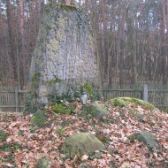 bukowina-sycowska-cmentarz-pomnik-poleglych-1
