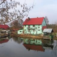 bukowina-sycowska-staw