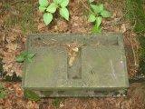 wszewilki-dawny-cmentarz-1.jpg