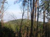 swierczyna-widok-na-oleszenke
