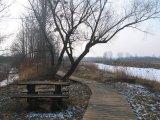 nowa-kuznia-rezerwat-staw-nowokuznicki-3