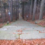 cierniak-schody-1.jpg