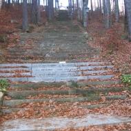cierniak-schody-3.jpg