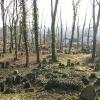 cieszyn-stary-cmentarz-zydowski-7