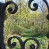 czempin-cmentarz-ewangelicki-3