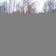 dabrowka-hubertus-polana-smierci-2