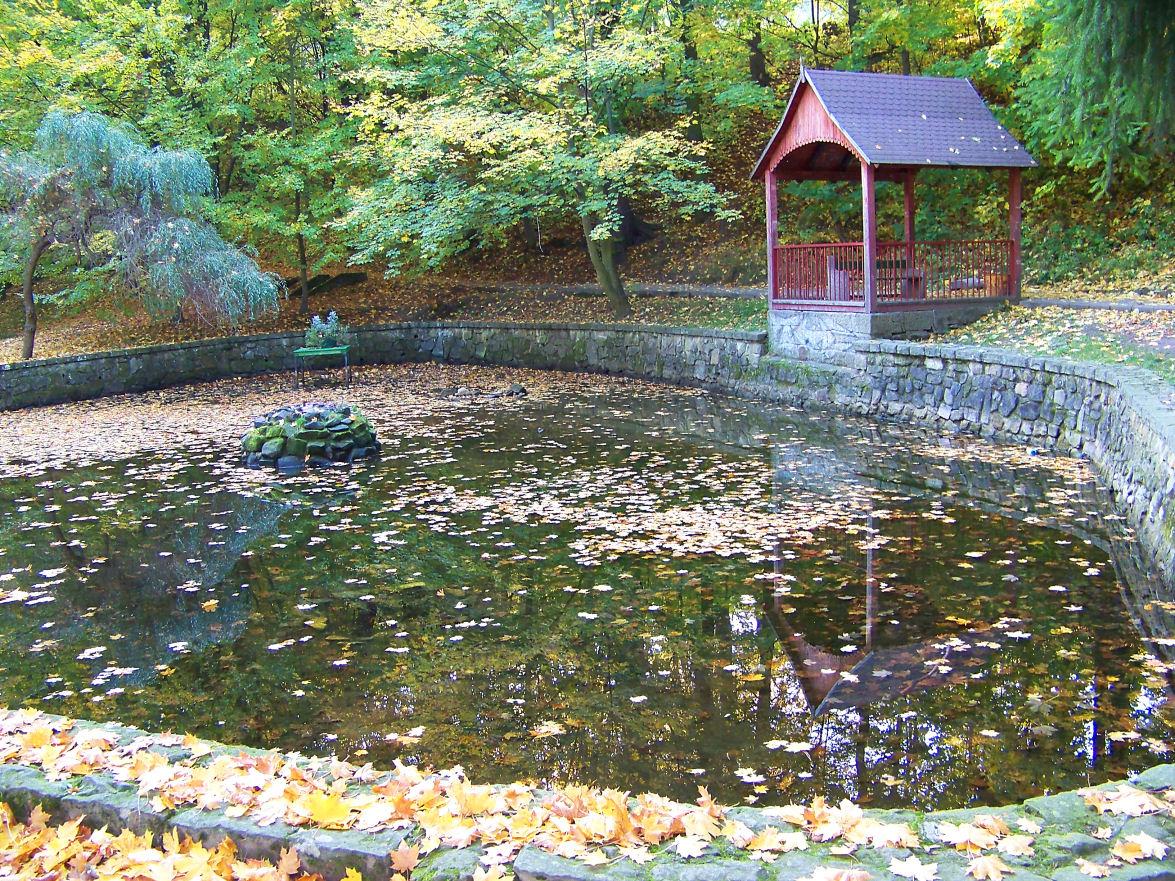 staw-w-parku-zdrojowym
