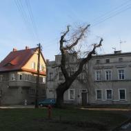 dobroszyce-rynek-1