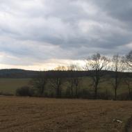 dolnoslaski-szczyt-widok-na-lesiste-wzgorza-2