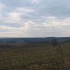 dolnoslaski-szczyt-widok-na-lesiste-wzgorza