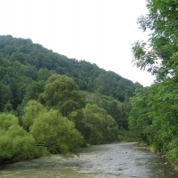 dolzyca-rzeka-solinka-1.jpg