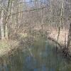 domaszczyn-rzeka-dobra