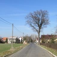 drzemlikowice-11
