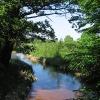 dylaki-rzeka-libawa