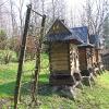 dziegielow-pszczele-miasteczko-8