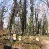 gliwice-stary-cmentarz-zydowski-2