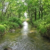 goczalkowice-zdroj-kanal-z-zapory