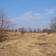 golebice-stacja-2