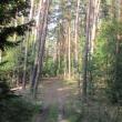 gorki-lubiatowskie-03