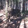 grochowiec-pozostalosci-fortow-1