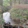 jasin-przed-3-piekielny-potok