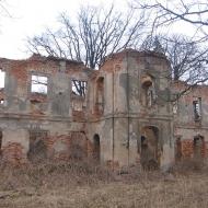jasiona-ruiny-dworu-1