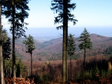 jawornik-wielki-widok-na-zloty-jar.jpg