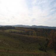 jerzykowice-wielkie-widok-na-borowa.jpg