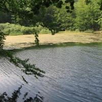 jeziorka-duszatynskie-jeziorko-gorne-4.jpg