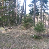 kamien-grobowiec-puttkamerow-1