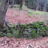 karpno-ruiny-wsi-3.jpg