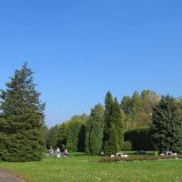 katowice-park-stachonia-2.jpg