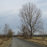 dobroszyce-kol-strzelce-j1