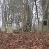 kosobudy-cmentarz-7