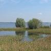 kotorz-wielki-jezioro-turawskie-07