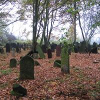 krzepice-cmentarz-zydowski-10.jpg