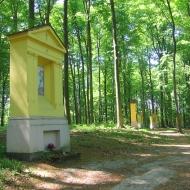 las-bukowy-droga-krzyzowa-3