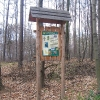 las-widok-sciezka-dydaktyczna-1
