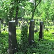legnica-cmentarz-zydowski-2