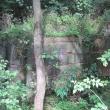 ue-lesne-stawki-kolo-goszcza-04