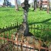 lutowiska-stary-cmentarz-4