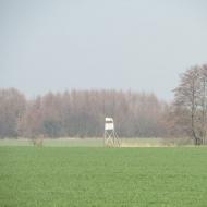 marszowice-milonow-4